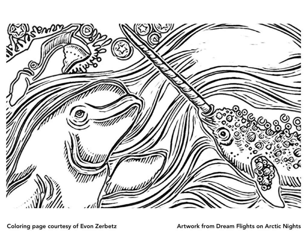 Dream Flights on Arctic Nights Coloring Page Narwhal